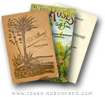 Catalogues - www.roses-nabonnand copyright